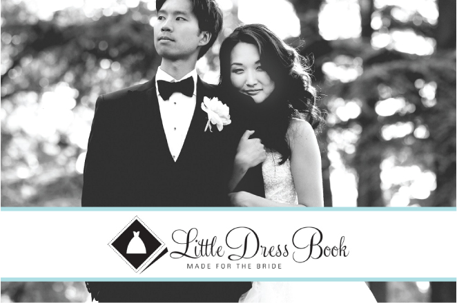 Little Dress Book