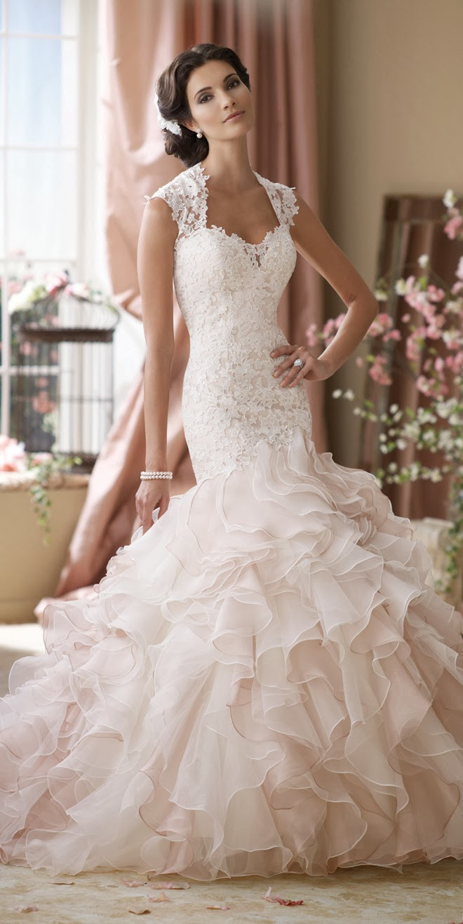 David tutera for mon cheri spring 2014 bridal collection for Wedding dress david bridal