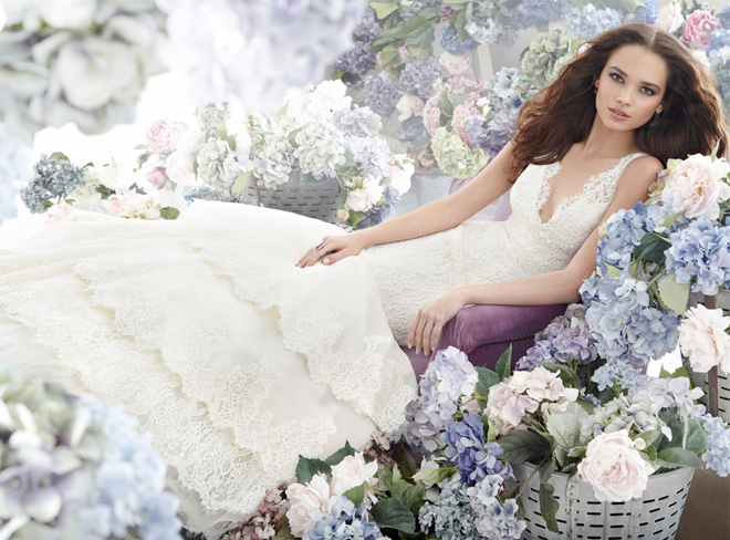 Jim Hjelm Bridal Collection Fall 2012 + My Dress of the Week