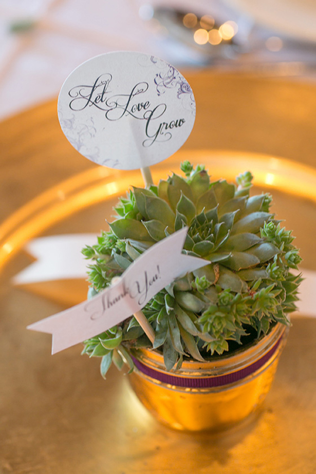 Succulents on a pot wedding favor