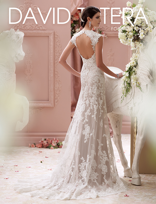 Gorgeous wedding dresses by david tutera for mon cheri david tutera by mon cheri wedding dress junglespirit Choice Image