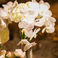 Wedding flowers - Clane Gessel Photography