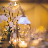 Wedding floral centerpieces - Kane and Social