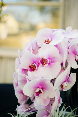 Purple wedding flowers - Jenna Leigh Wedding Photography
