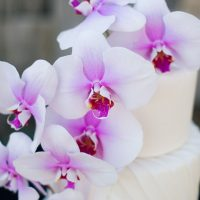 Wedding cake ideas - Jenna Leigh Wedding Photography