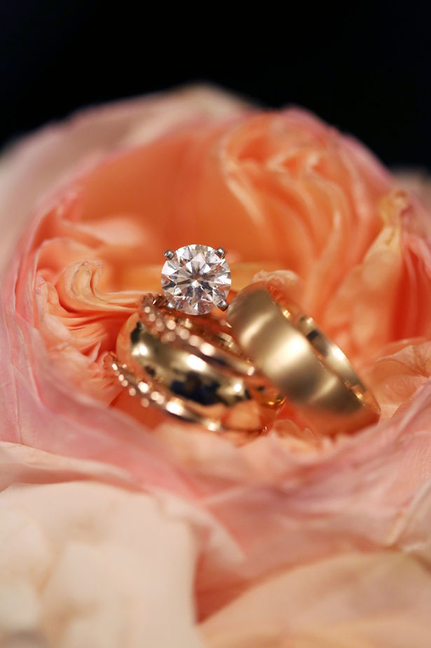 Bride and groom rings - BLUE MARTINI PHOTOGRAPHY