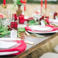 Holiday inspired wedding tabbleescape - Dani Cowan Photography