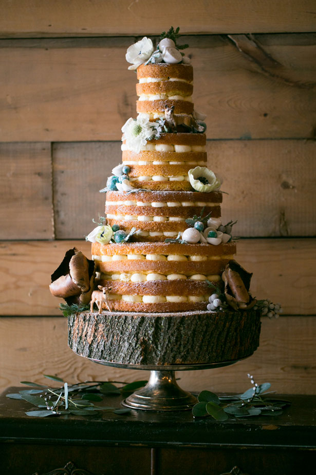 Naked wedding cake - Erin Johnson Photography
