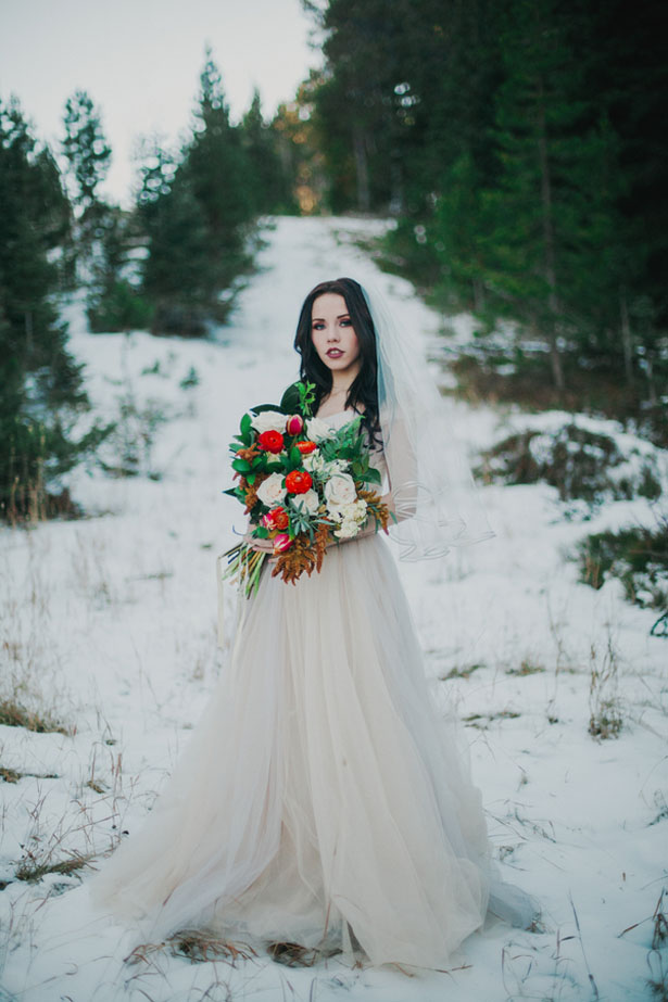 Winter Bridal Portrait - Julli Anna photography
