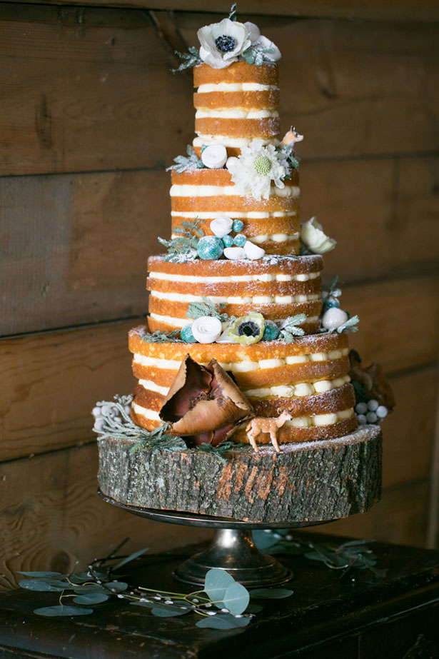 Winter wedding cake - Erin Johnson Photography