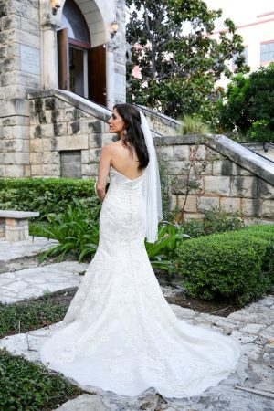 Beautiful wedding dress - HydeParkPhoto
