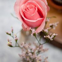 Pink wedding roses - Claudia McDade Photography