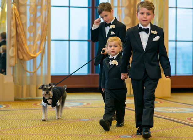 wedding ring bearer - Clane Gessel Photography