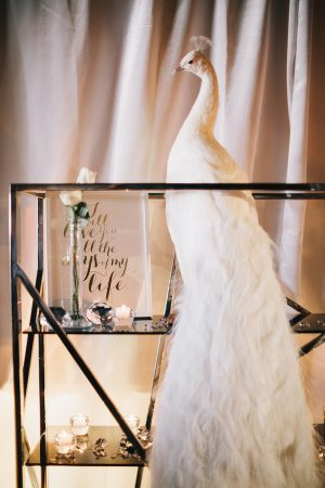 Wedding decor -Erika Layne Photography
