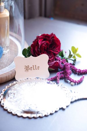 Beauty and the beast wedding decor - Melissa Sigler Photography