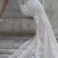 Dominiss Wedding Dresses 2017