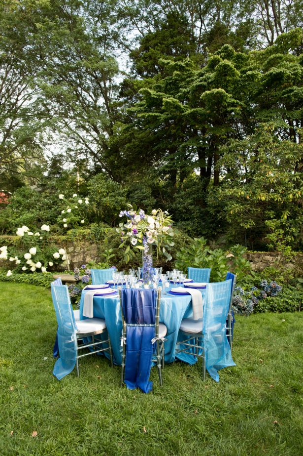 Eclipse Inspired Blue Tablescape - Images by Berit