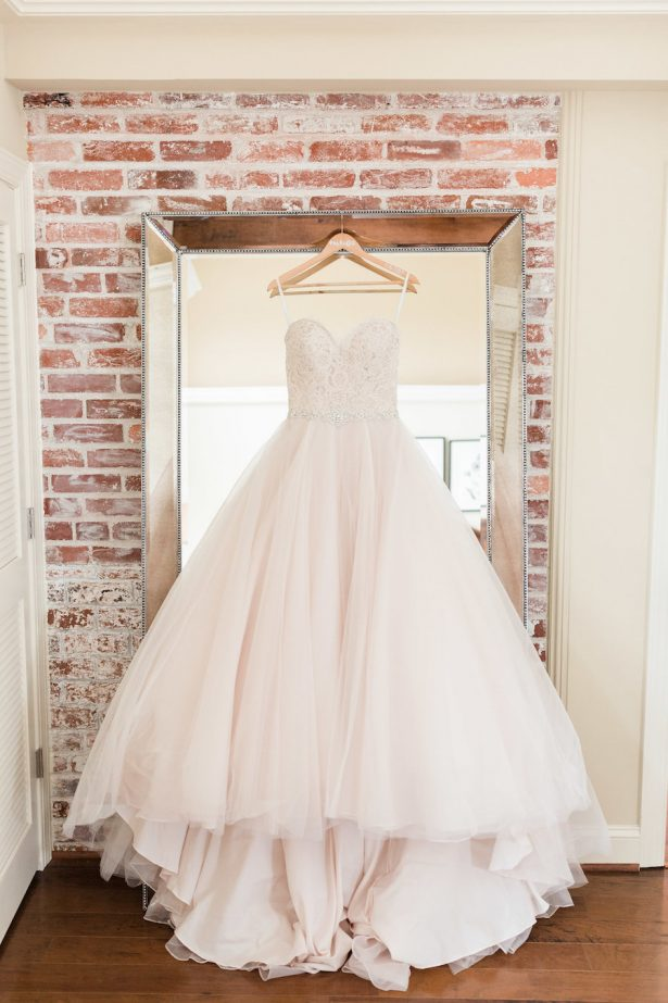 blush ballgown wedding dress - Alicia Lacey Photography
