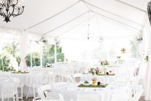Beautiful Wedding Reception - Shane Hawkins Photography