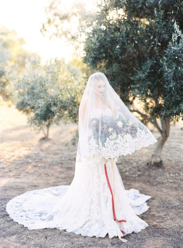 Wedding Veil - Sheri McMahon Photography