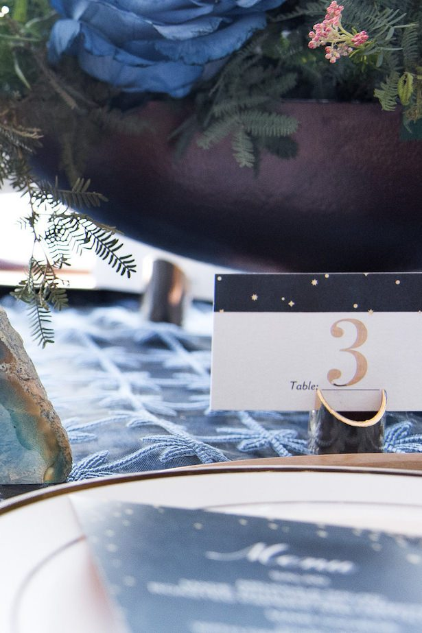 Celestial Wedding by Shutterfly - Vanessa Anne Photography
