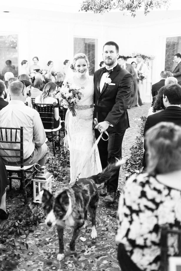 Wedding Dog - Lieb Photographic