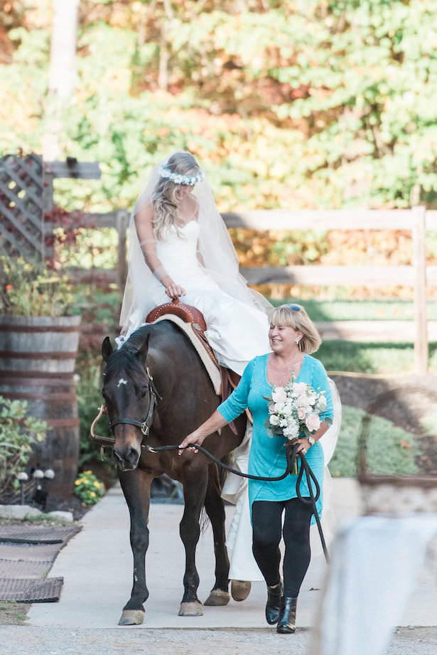 Wedding Horse - Juicebeats Photography