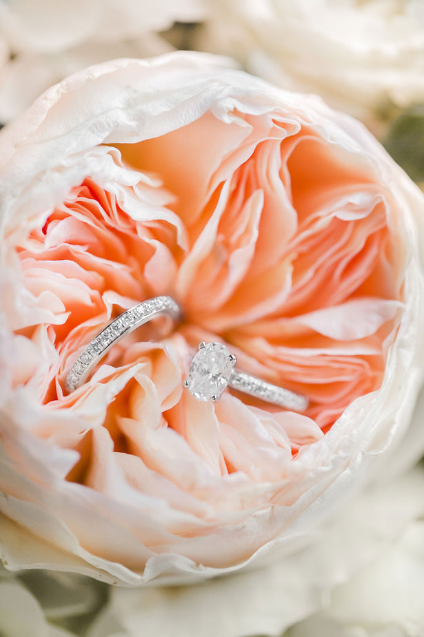 Bridal Diamond Ring Set - Allison Nichole Photography