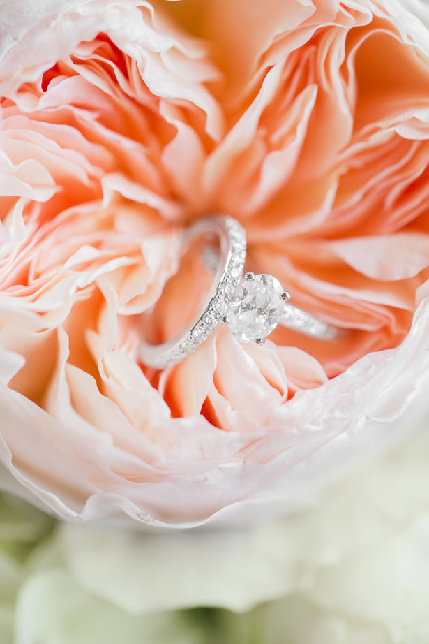 Gorgeous Diamond Wedding Ring - Allison Nichole Photography