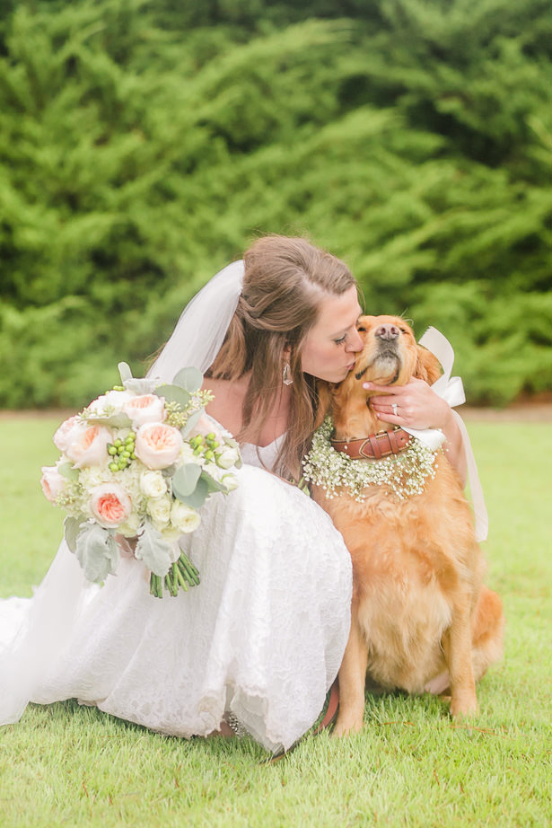 Wedding Dog - Allison Nichole Photography