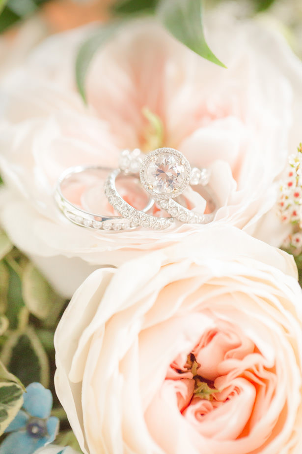 Wedding Rings - Idalia Photography