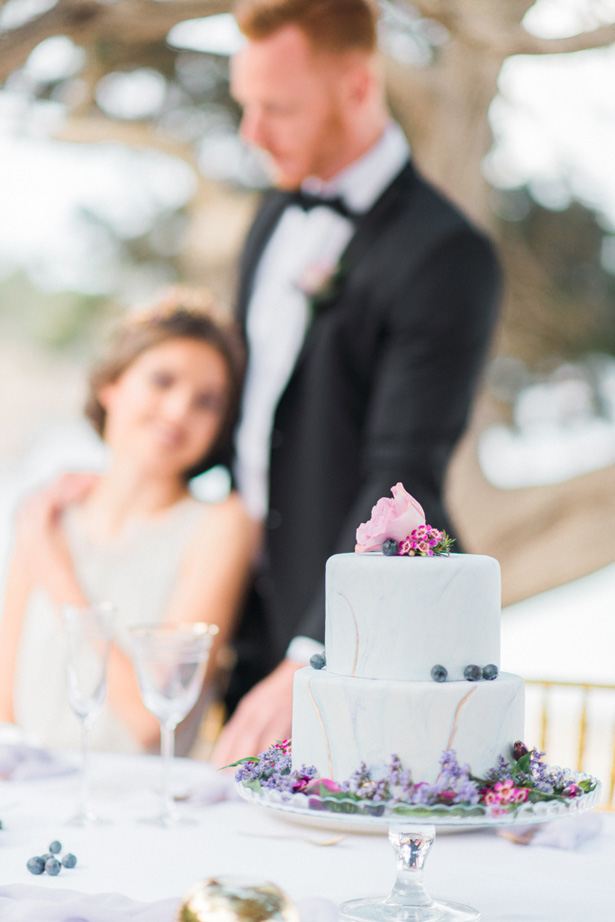 Marble Purple Accent Wedding Cake - Heike Moellers Photography