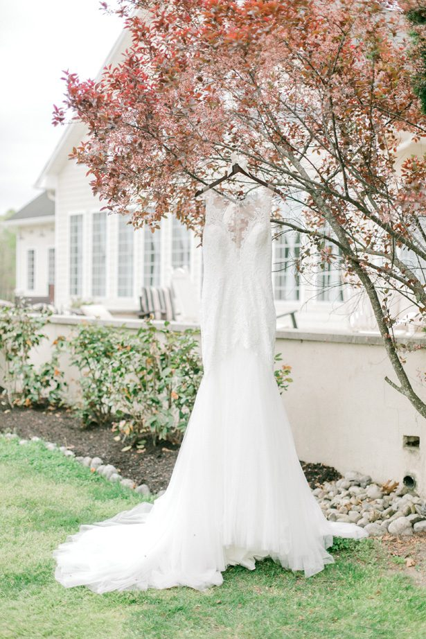 Wedding dress photo - Photography: Lauren Westra