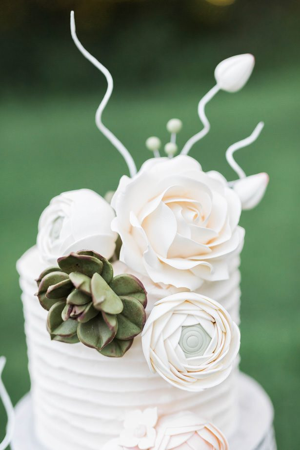 white and gray wedding cake with succulants - Sarah Sunstrom Photography