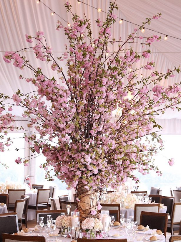 Cherry blossoms wedding centerpieces - Photography: Adam Opris