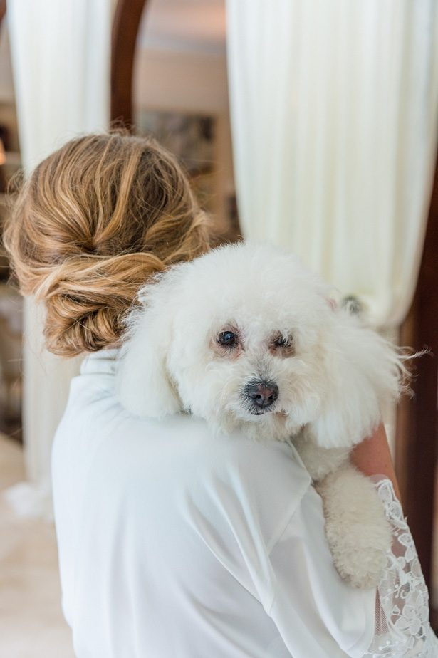 Wedding dog - Heather Durham Photography