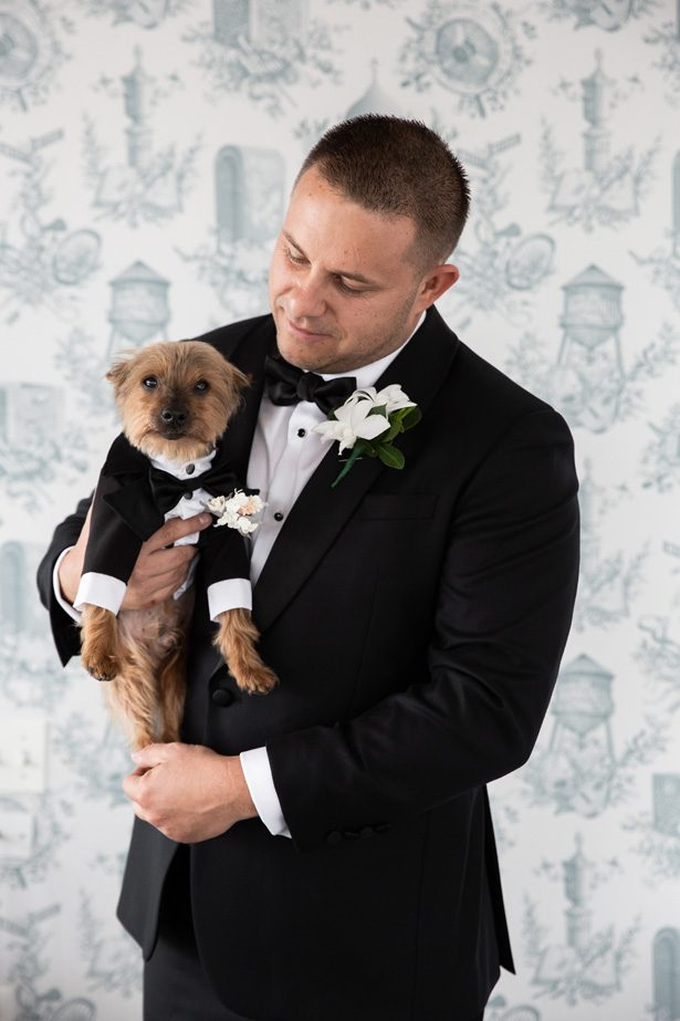 Groom and wedding pet- Rafal Ostrowski Photography