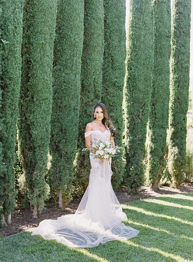 Napa Wedding bridal portrait in front of cypress trees - O'Malley Photography